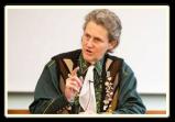 Temple Grandin kommer tilDanmark